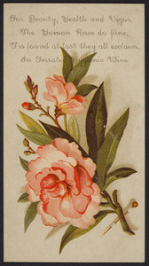 Trade card for Ferrated Hygienic Wine, C.H. & J. Price, Salem, Mass., undated