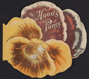 Hood's pansy, published by C.I. Hood & Co., Lowell, Mass., undated