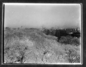 View of Boston Common, Boston, Mass., undated