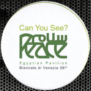 Can You See? : pin