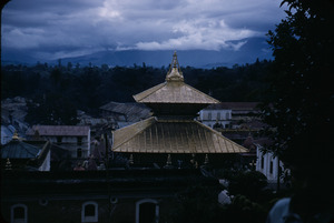 Rooftops around Pashupatinath Temple