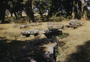 Ancient Munda megalithic monuments in the Ranchi district