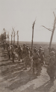French soldiers and horses walking down a dirt road lined with damaged trees