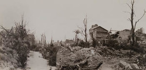 View of badly damaged wooden buildings and trees