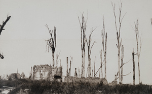 Ground-level view of destroyed stone buildings surrounded by burnt tree stumps