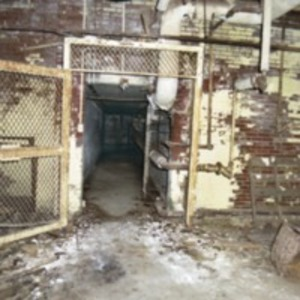 Basement Caged Door