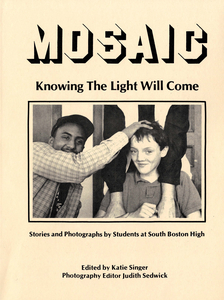 Mosaic records and publication, 1980-1990