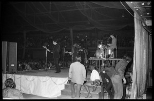 The Association in concert, Curry Hicks Cage, UMass Amherst