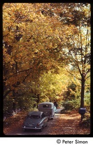 Cars on a dirt road with trees in full autumn color, Tree Frog Farm commune