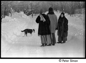 Catherine Blinder, Elliot Blinder, and Marcia Braun (l. to r.) walking down a snowy road, Tree Frog Farm commune