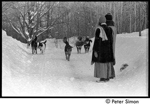 Catherine Blinder, Elliot Blinder, Marcia Braun, and dogs walking down a snowy road, Tree Frog Farm commune