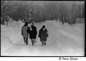 Elliot Blinder, Catherine Blinder, and Marcia Braun (l. to r.) walking down a snowy road, Tree Frog Farm commune