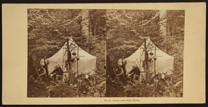 White Mountains stereo views collection, 1850s-1890s (PC051)