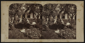 Stereograph of the T.W. Tuttle family picnicking in a garden, Dorchester, Mass., undated