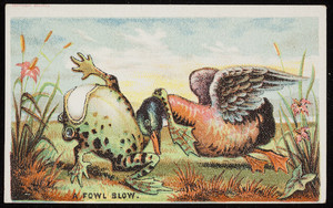 Fowl blow, location unknown, 1880s