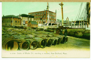 Casks of whale oil, awaiting a market, New Bedford, Mass.
