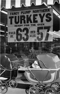 Turkeys, Boston, 1952
