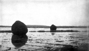 Marshes, Newburyport, Mass., ca. 1885