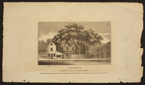 Liberty Tree, 1774, corner of Essex and Orange Streets