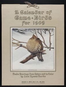A Calendar of Game Birds for 1909
