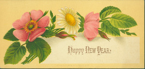 New Year's card, depicting pink roses and a white daisy, 1876