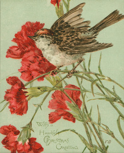Christmas card, showing a sparrow and carnations, undated
