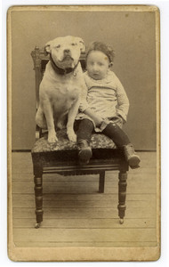 Carte-de-visite of an unidentified boy and a dog seated on a chair, Newburyport, Mass., undated