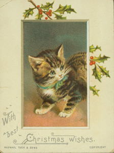 Christmas card, showing a kitten and holly, undated