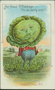 Trade card for Mr. Head O'Cabbage, J.H.Stein's Store, 843 Penn Street, Reading, Pennsylvania, undated
