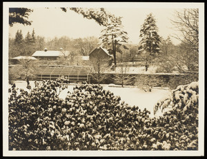 Exterior view of the Lyman Estate greenhouses in winter