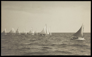 A group of small boats under sail.