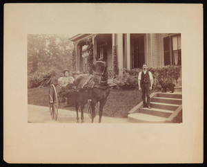 Horse pulling carriage with unidentified rider