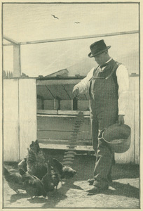 Booker T. Washington feeding chickens