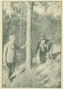 Booker T. Washington picking flowers in the woods