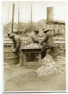 Fishermen cleaning fish on the dock