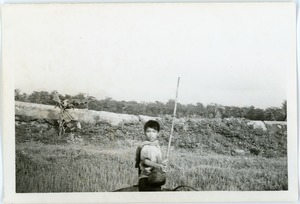Boy in countryside