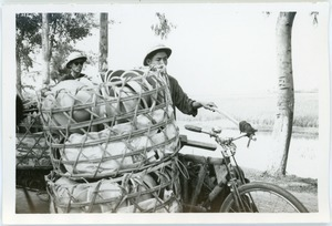 Cyclists with freight, Thái Bình province