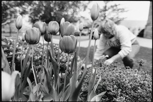 Groundsperson Barbara Tully planting flowers in front of Gasson