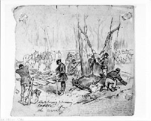 Butchering and Dressing Cattle for the Army Camp, Bacon Creek, Hart County, Kentucky