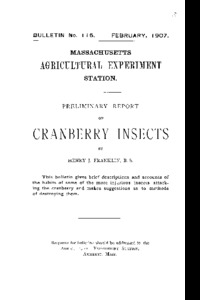 Preliminary report on cranberry insects.