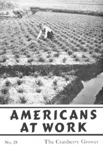 Americans at work : the cranberry grower