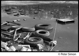 Discarded tires and refuse littering a pond
