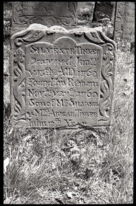 Gravestone of Silvester Tinker (1768), Old Cove Burying Ground