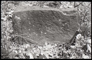 Field gravestone for Daniel Cone (1725), Old Cove Burying Ground