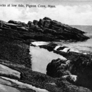 The rocks at low tide, Pigeon Cove, Mass.