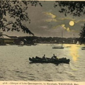 Glimpse of Lake Quannapowitt by moonlight, Wakefield, Mass.