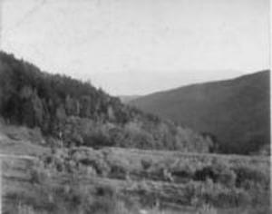 Above Flora's Glen, ca. 1897