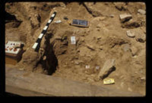 Artifacts at Trench 102, 1988