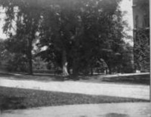 Chapin Hall site, 1897