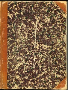 Massachusetts Agricultural College Class of 1875 Minute Book